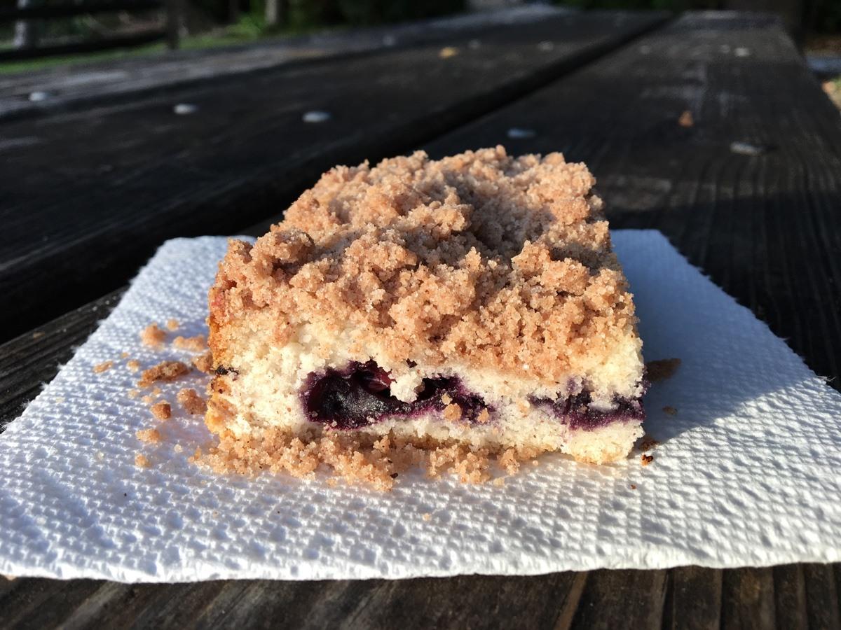 close up shot of vegan gluten-free blueberry coffee cake