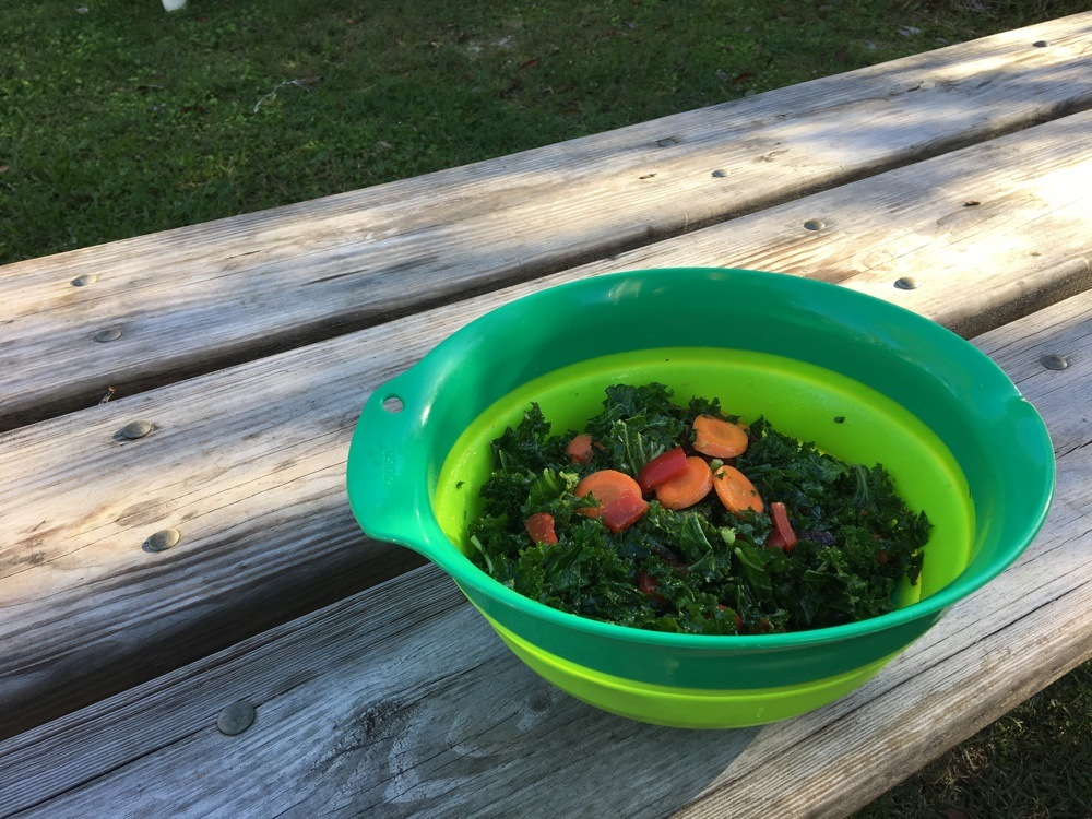 kale salad in collapsible mixing bowl