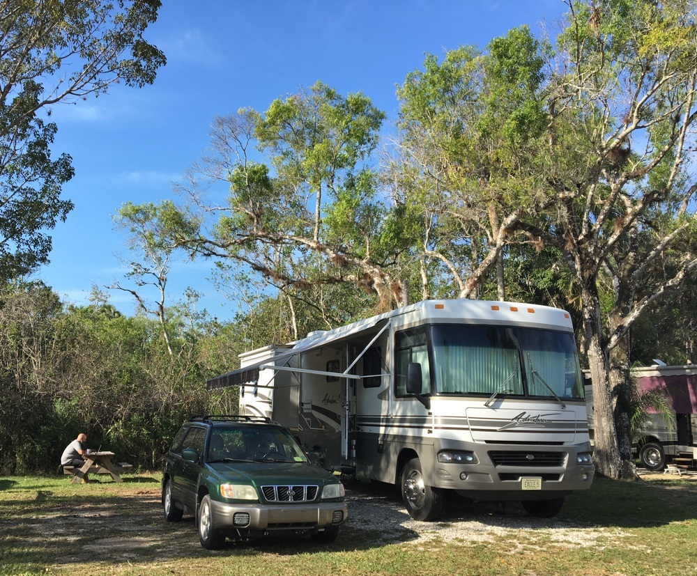 camping site 100 at Collier Seminole State Park