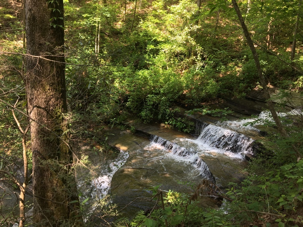 Carrick Creek Trail waterfall.